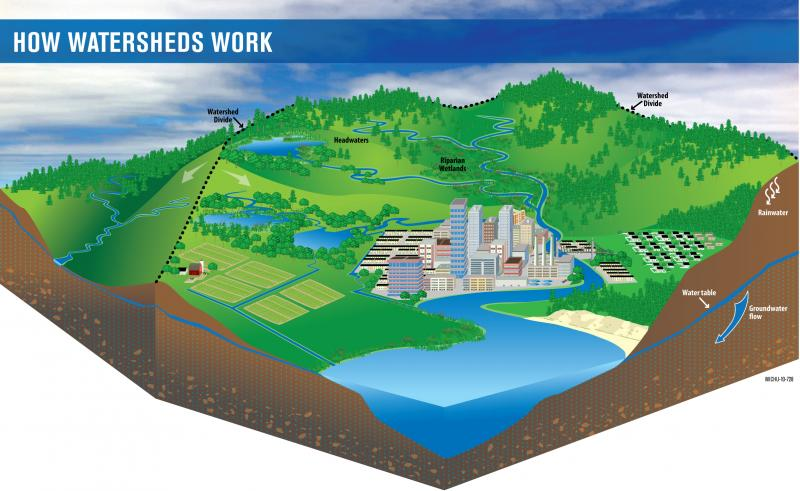 drawing of a watershed