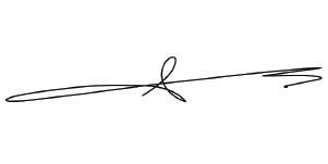 Dolf van den Brink signature
