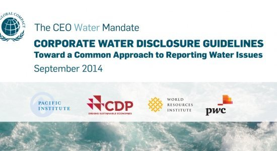 Corporate Disclosure Guidelines cover