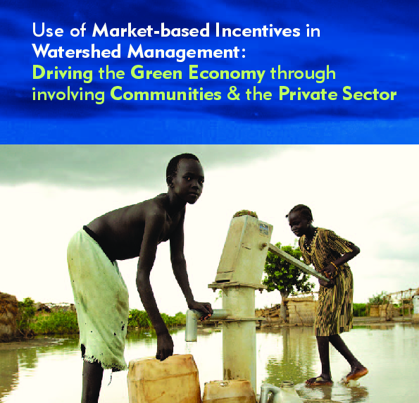 UNEP market based incentives