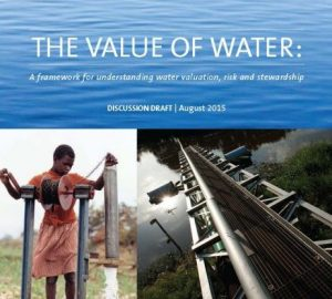 The Value of Water cover