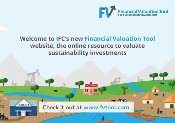 Financial Valuation Tool flyer - www.fvtool.com