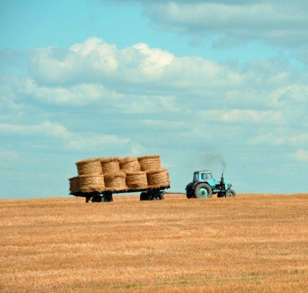 tractor pulling hay bails in open field