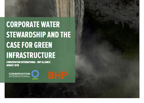 Corporate Water Stewardship and the Case for Green Infrastructure