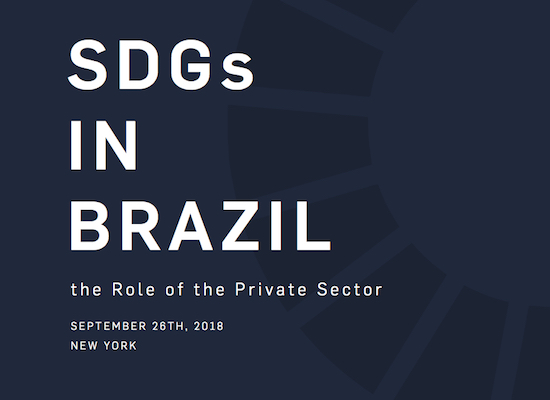 text: SDGs in Brazil: The Role of the Private Sector