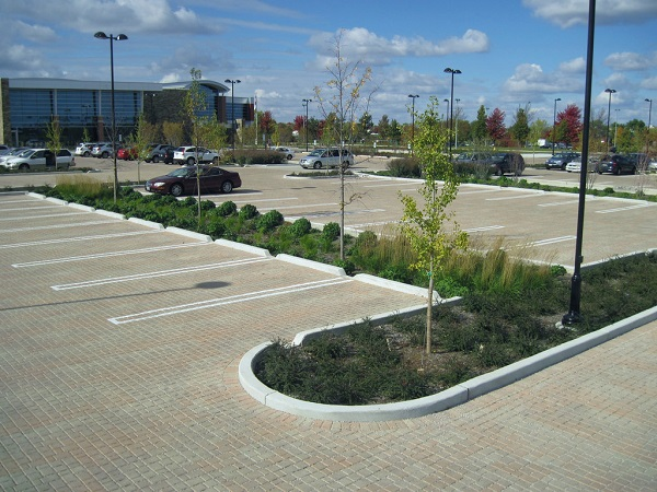 sustainable landscape in parking lot - photo