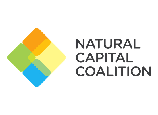 Natural Capital Protocol logo