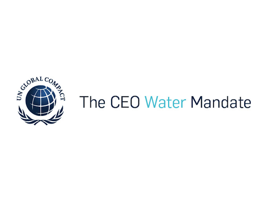 CEO Water Mandate 2018-2020 Strategic Plan: 2019 Update
