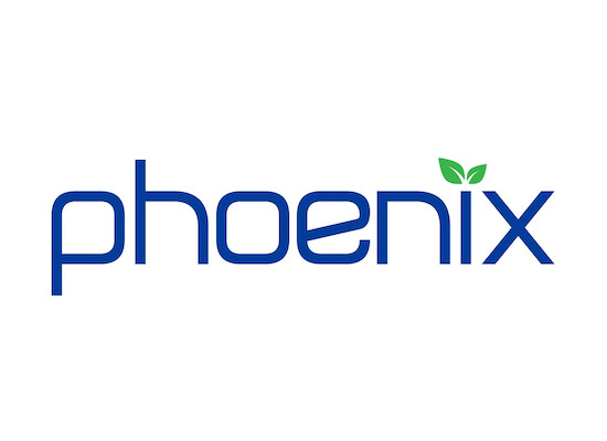 phoenix global communication on progress