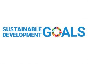 Sustainable Development Goals Report
