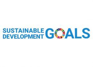 Sustainable Development Goals Report