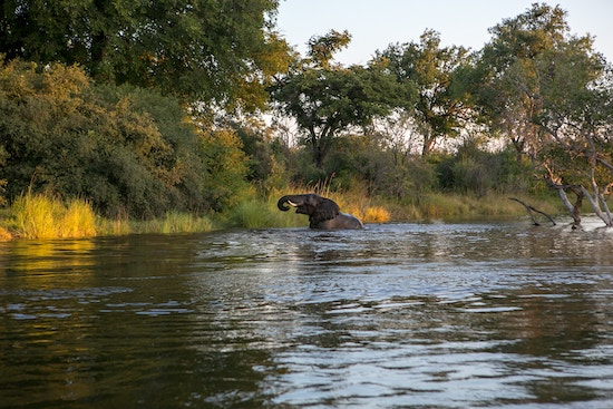 zambia water stewardship