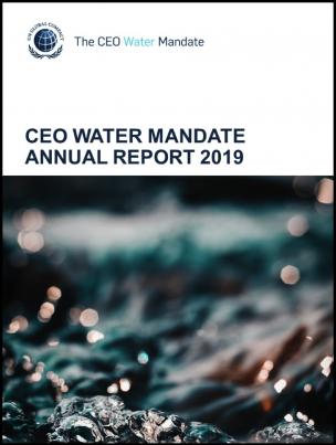 CEOWM-annual-summary-2019-cover1
