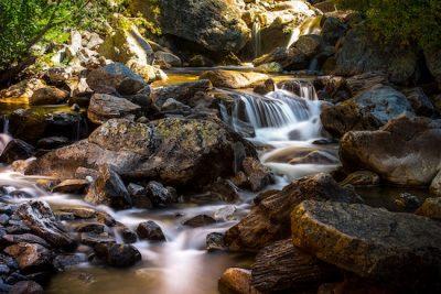 Freshwater Biodiversity Loss