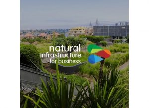 Natural Infrastructure for Business