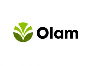 Survival of the Driest – Olam's Innovative Onion Breeding Program