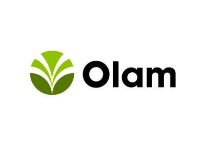 Survival of the Driest – Olam's Innovative Onion Breeding Program