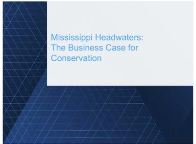 Mississippi Headwaters: The Business Case for Conservation