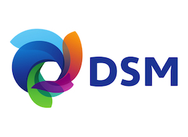 royal dsm communication on progress